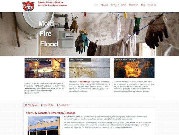 Disaster Recovery Website